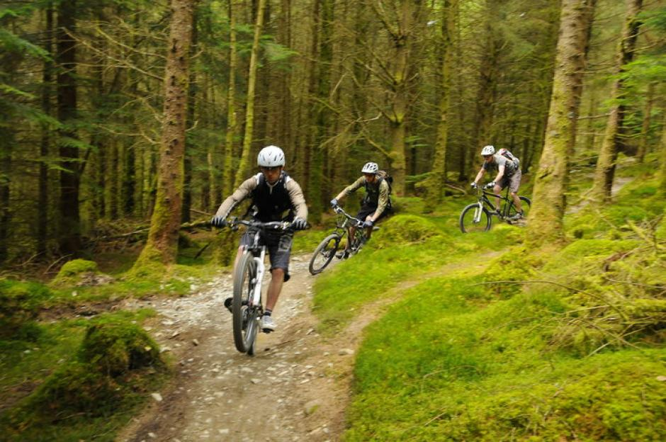 Coed-y-Brenin - Mountain Bike Spot   All Rides Now