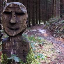 Betws-Y-Coed - Marin Trail