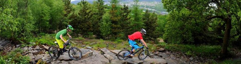 Bikepark Wales (Source: Facebook)