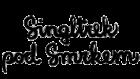 Singltrek pod Smrkem Logo