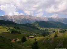 Brasov county