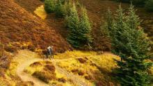 Rychlebské stezky Trails